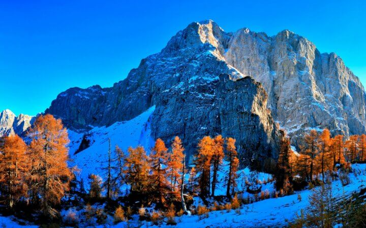 Mountains with snow and treeline